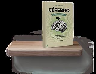 cérebro-manual-utilizador.png