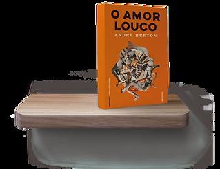 O-Amor-Louco2.png