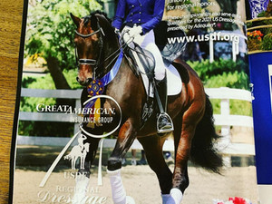 """DHS Imported/Owned """"Hartog"""" in Latest USDF Ad!"""