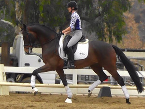 DHS Horses Featured at Del Mar National Dressage Show 2017