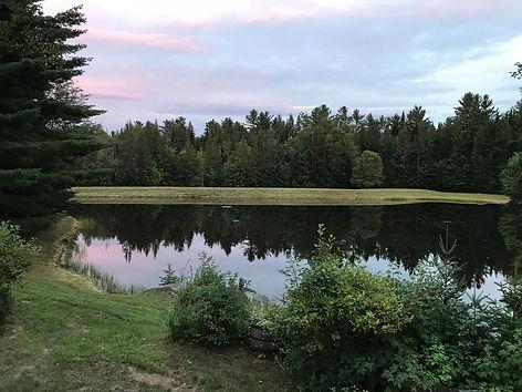 Pond-Pink Sky.jpg