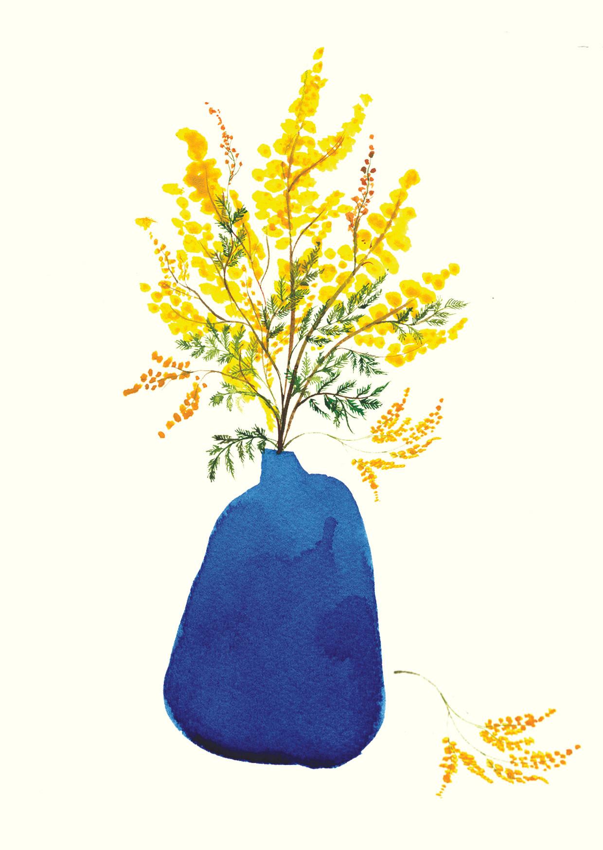 Mimosa In Blue Vase