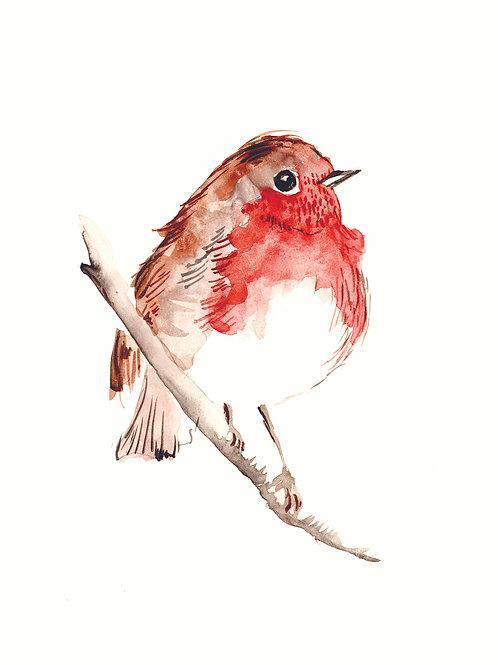 Robin - Christmas handmade card