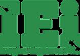 IEi logo.webp