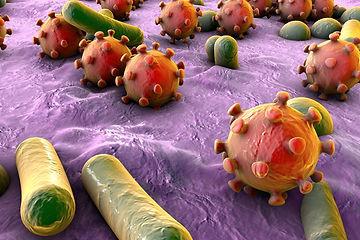 pathogens.jpg