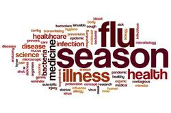 36075683_s Flue Season