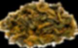 19-01-17 - 227 зелчай3300 - альфаканал-W