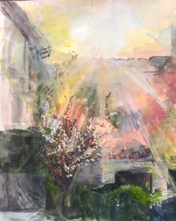 France Spring Sun