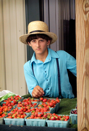 Amish boy with strawberries