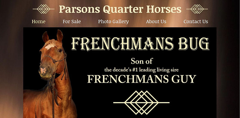 Parsons Quarter Horses website.JPG