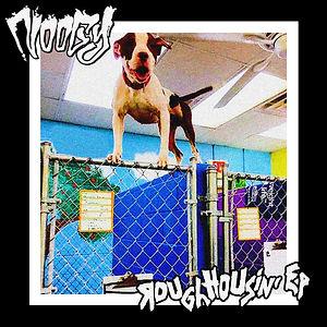 Noogy-Roughhousin-Cover.jpg