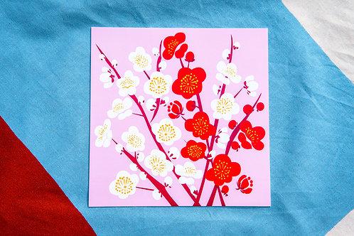 Zusetsu Plum Blossom Postcard Pack