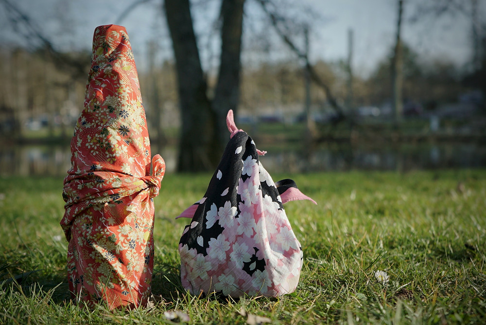 picnic in the park, hanami, cherry blossom, furoshiki wrap, bento, Japan, Zusetsu Store, online event