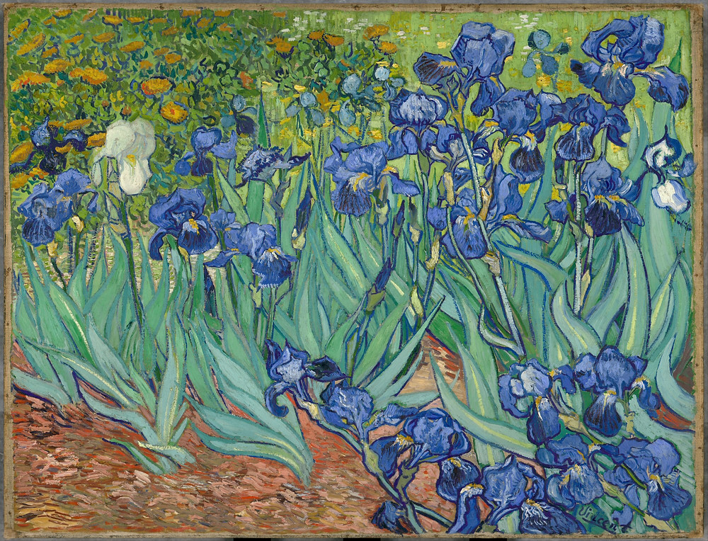 French Impressionists, art, Van Gogh, iris, painting