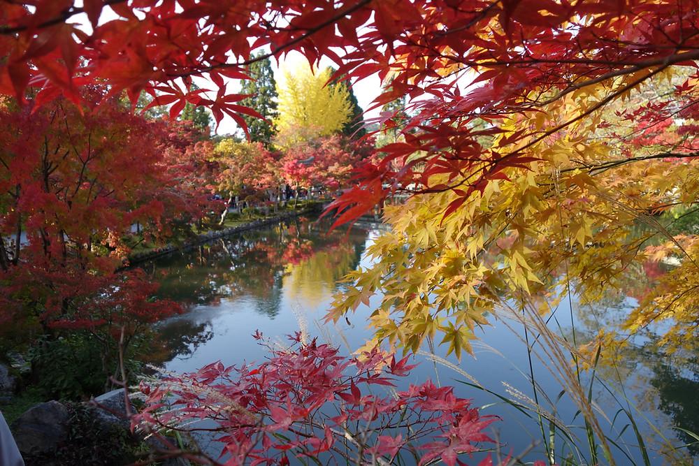 Zusetsu Kyoto