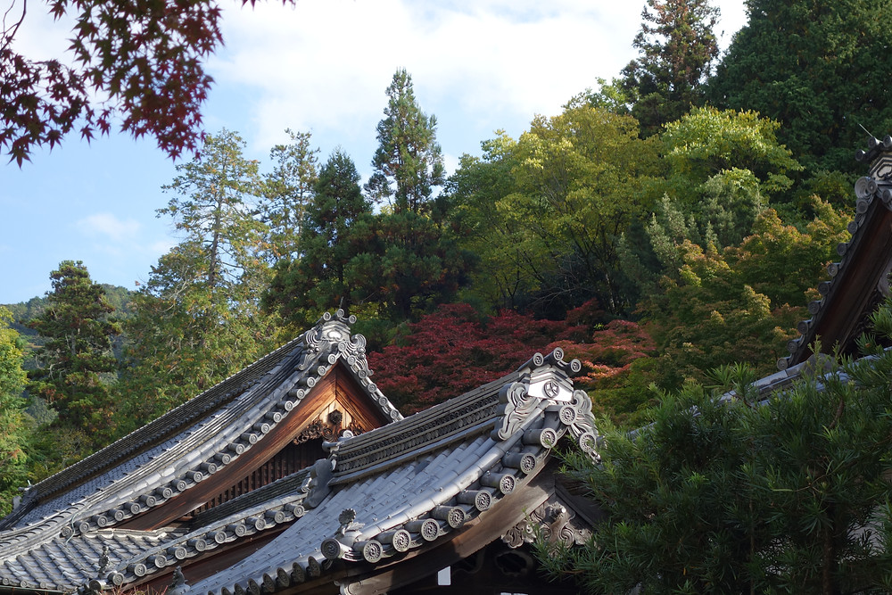 Kyoto, temple, Japanese aesthetic