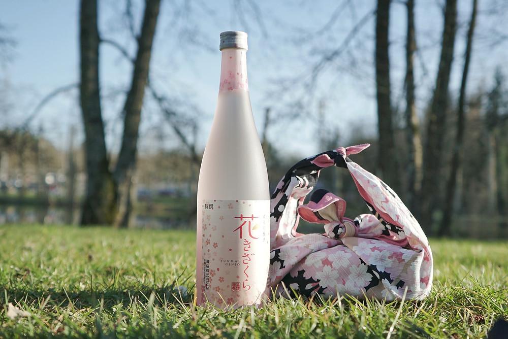 bento, furoshiki, gift wrap, bottle wrap, wine, Zusetsu