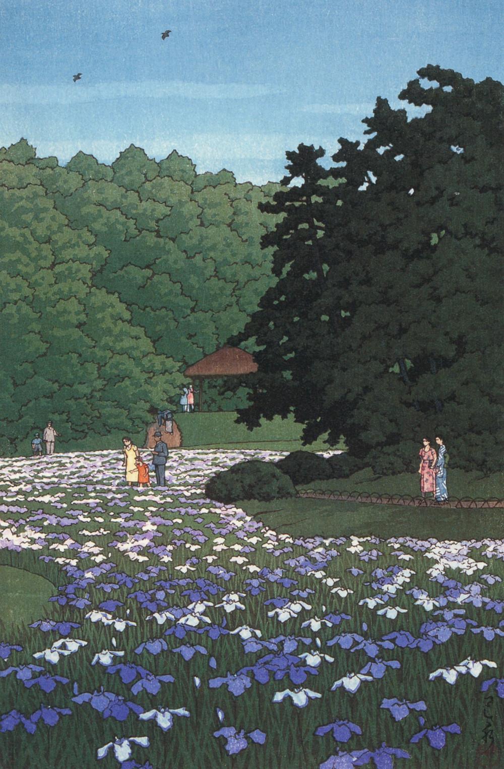 iris, flower, Japanese garden, art, Japanese art