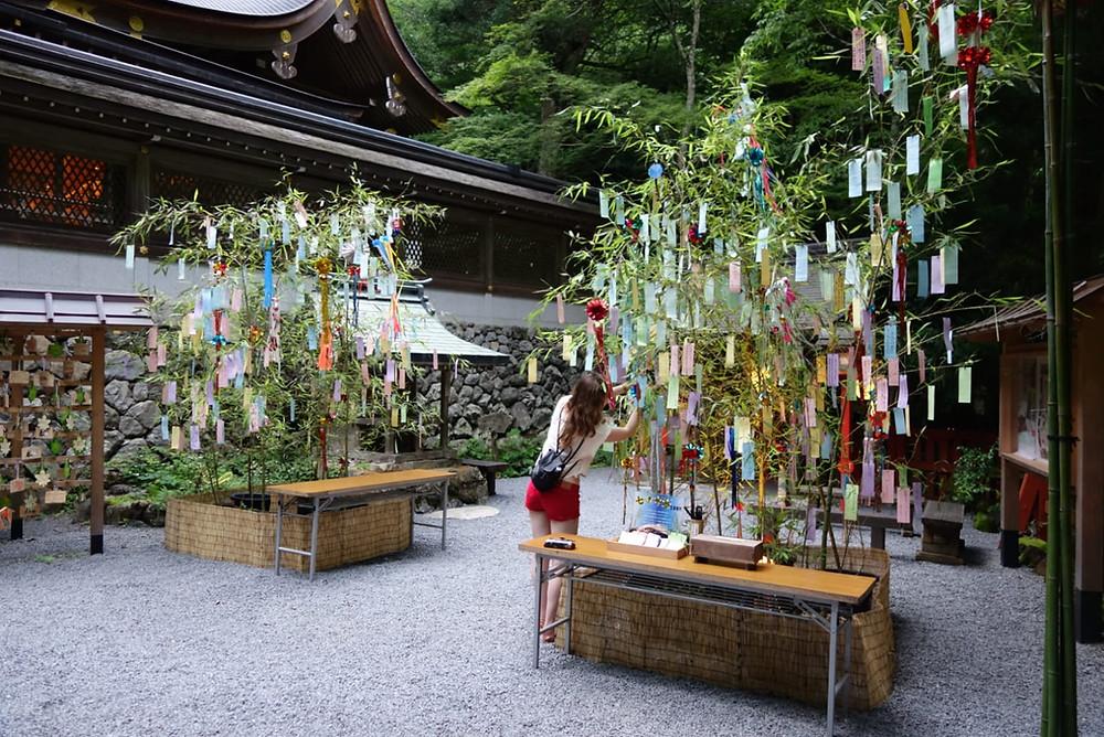 tanabata, wish cards, Kyoto, Zusetsu store
