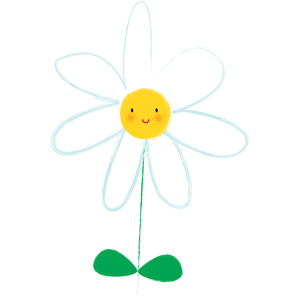 drawing of a daisy