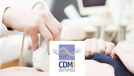 logo_cdmi.jpg