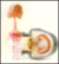 bps 2.jpg