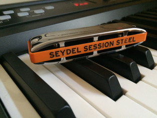 Which Seydel Diatonic Do You Recommend?