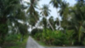 Selangor Kg.jpg