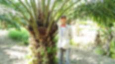 Selangor_Fitris.jpg