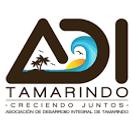 ADI tamarindo.png
