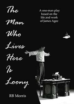 The Man Who Lives Here Is Loony Book