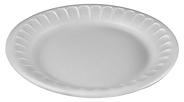 Styrofoam plate.png