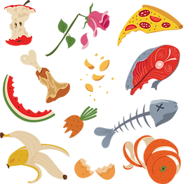 PURCHASED compost illustrations.png
