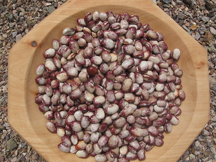 1335385941_Colorado_River_Beans.jpg