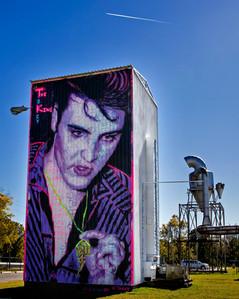Neon Elvis