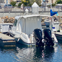 Twin Outboard Rated