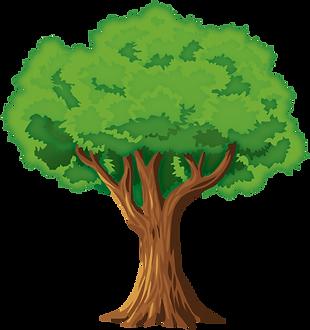 Green_Tree_PNG_Clip_Art-3187.png