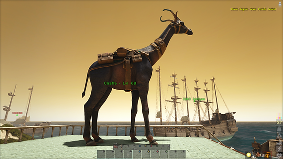 Super High Level Giraffe W/Saddle