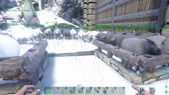 3 Slaughter Sheep (Also Available On Gen1268)