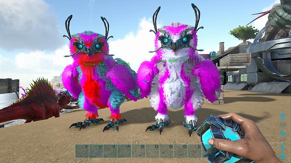 252/224 Unleveled Breeding Pair Valetine Event Snow Owls