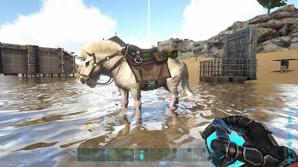 195 Unleveled Rare Unicorn 🦄 Female BroodMare W/MC Saddle