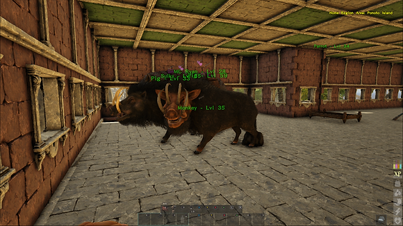 High Level Pig W/Saddle