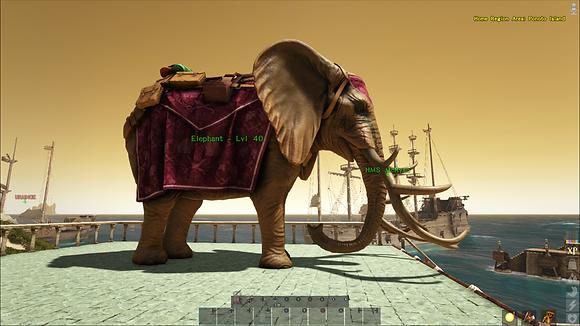 High Level Elephant W/Saddle
