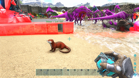 127 Red Event Otter