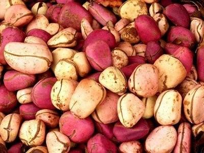 Kola-nuts1.jpg