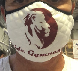 Adult Pride Face Mask