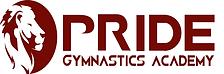 Pride Gymnastics banner.png