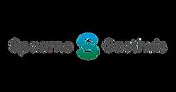 spaarne-logo-3-300x157.png