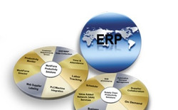 ERP Consulting Services
