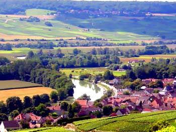 Marne-scene.jpg